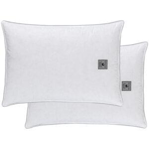 Μαξιλάρια Ύπνου Guy Laroche Ballfiber Virgin
